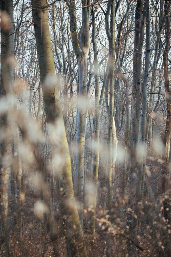 Freynoi-DieHochzeitsfotografinnen-Web-7350