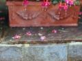 Regen-Hochzeit-in-Tirol-17