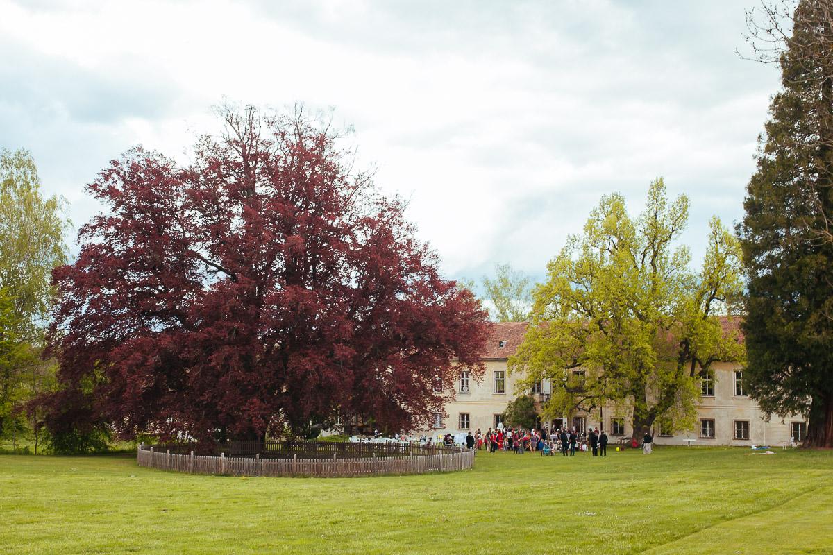 02Freynoi-Hochzeitsfotografie-Waldviertel-Schlooss-Wetzlas-7095